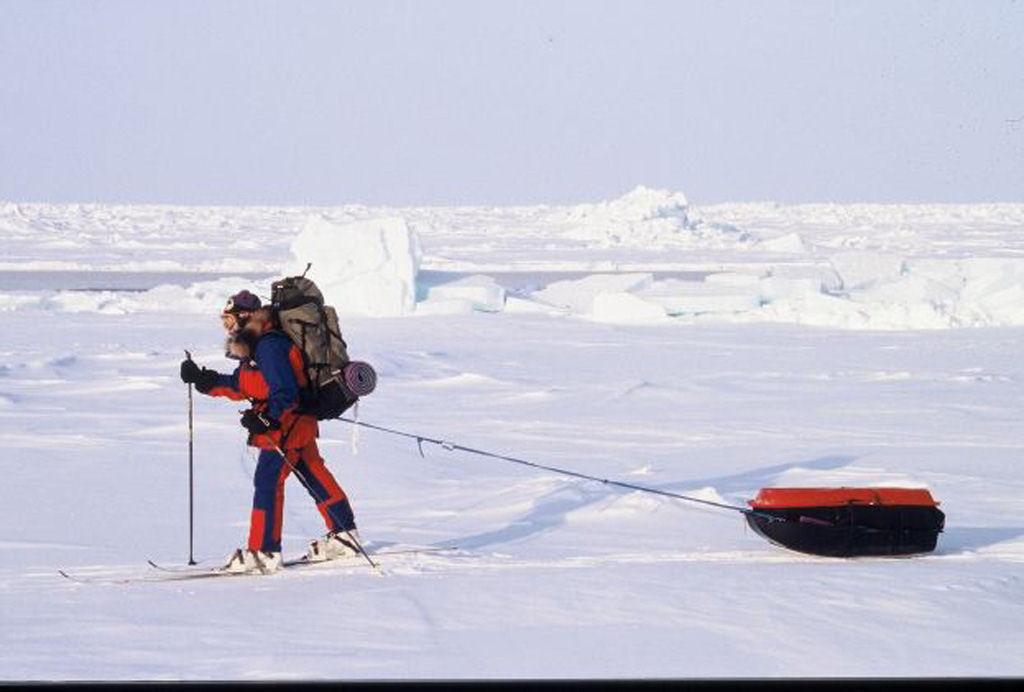 Arctic skier