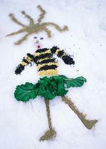 wildlife treat in snow