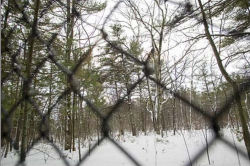Expansion land for Traverse City State Park